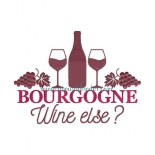 Bourgogne wine else